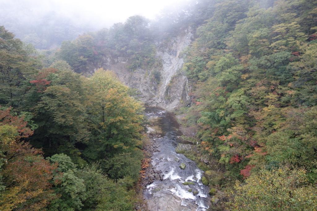 秋保大滝滝壺への道(不動滝橋上から見る秋保温泉方面)
