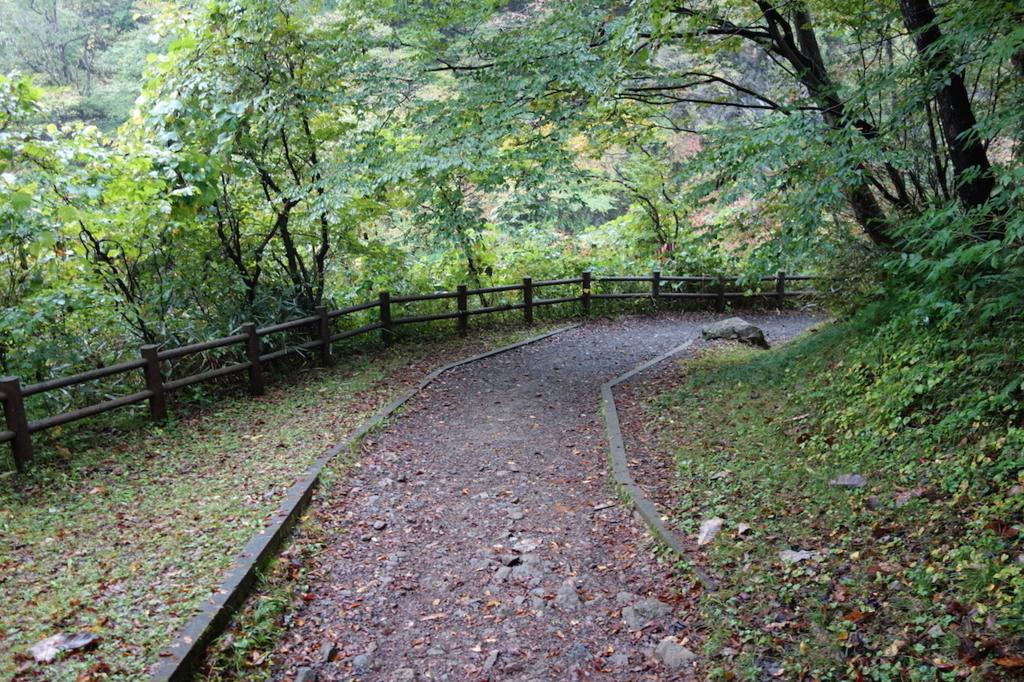 秋保大滝滝壺への道(不動滝橋の階段を降りた場所)