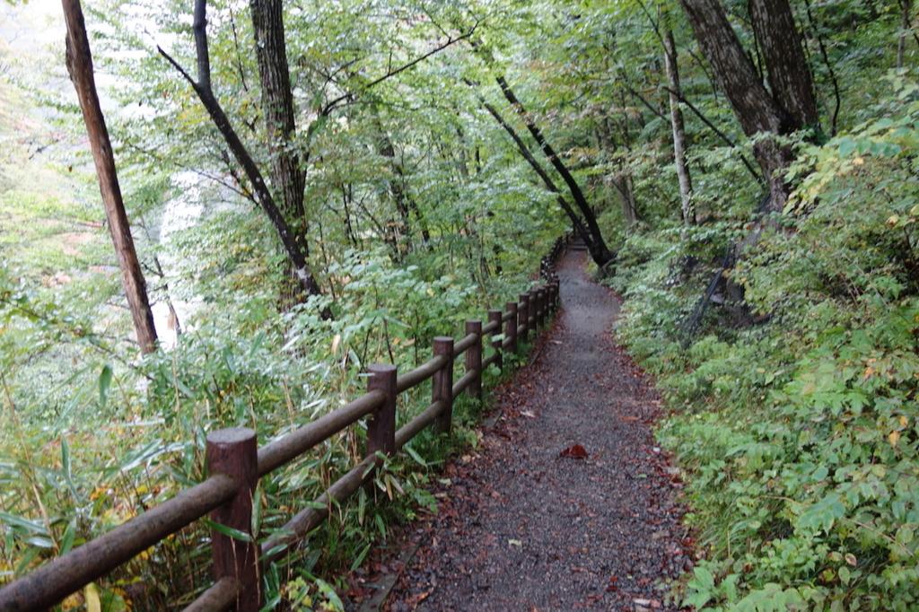 秋保大滝滝壺への道(不動滝橋からの林道)