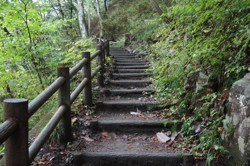 秋保大滝滝壺への道(不動滝橋からの林道にある階段)