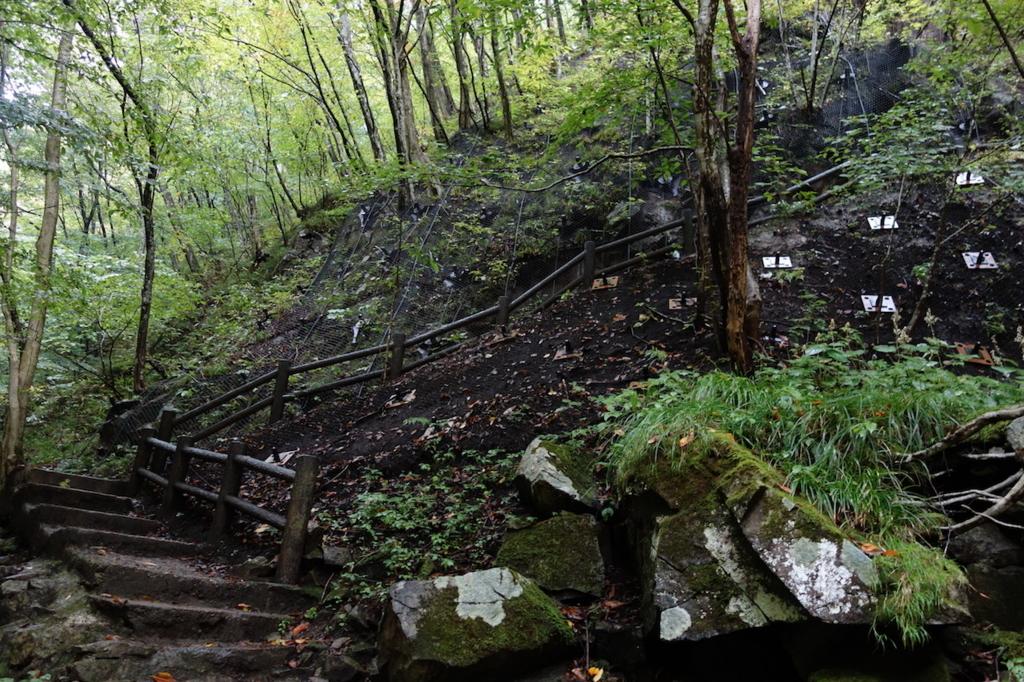 秋保大滝滝壺への道(滝壺から見た階段)