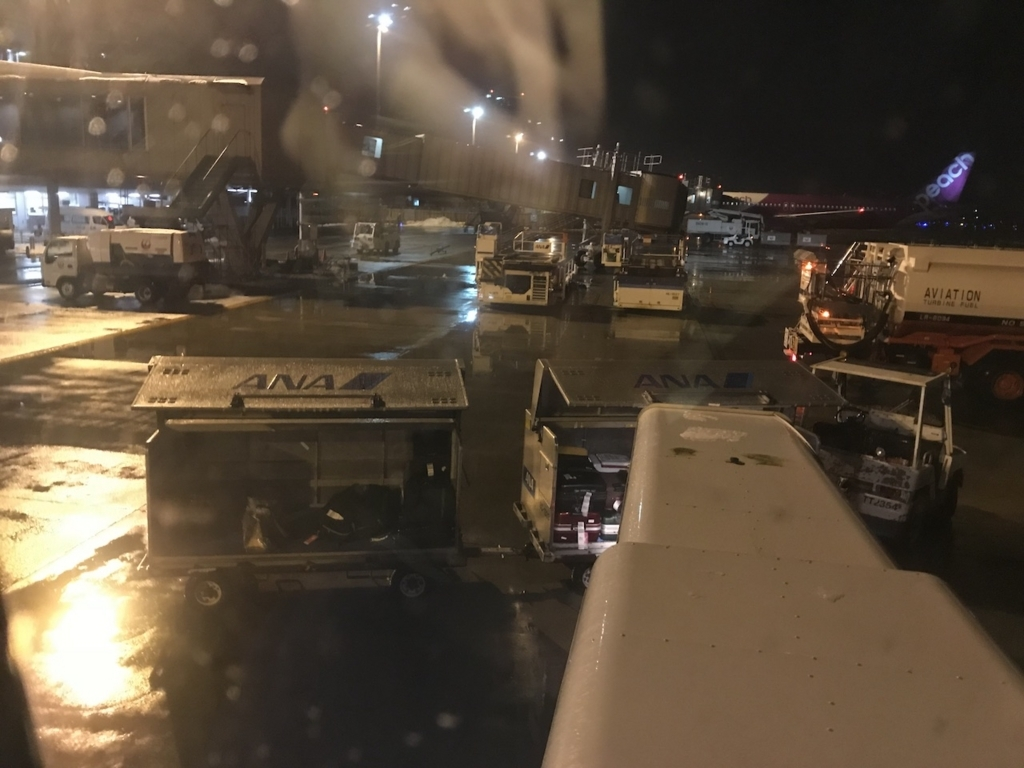 ANA737便から見た雪が降る仙台国際空港(平成30年1月23日)