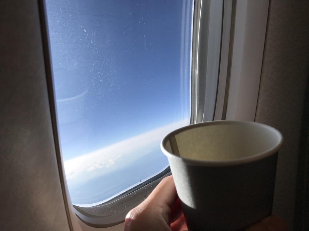 ANA732便から空に向かって乾杯(平成30年2月5日)