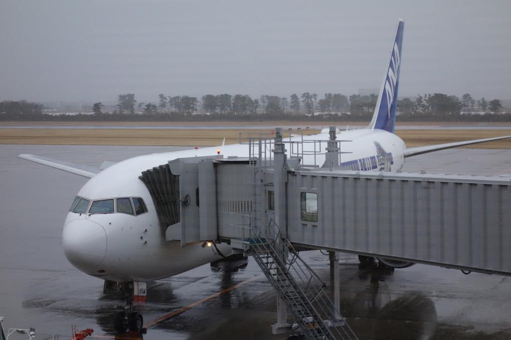 空港内から見たANA732便(平成30年3月1日)