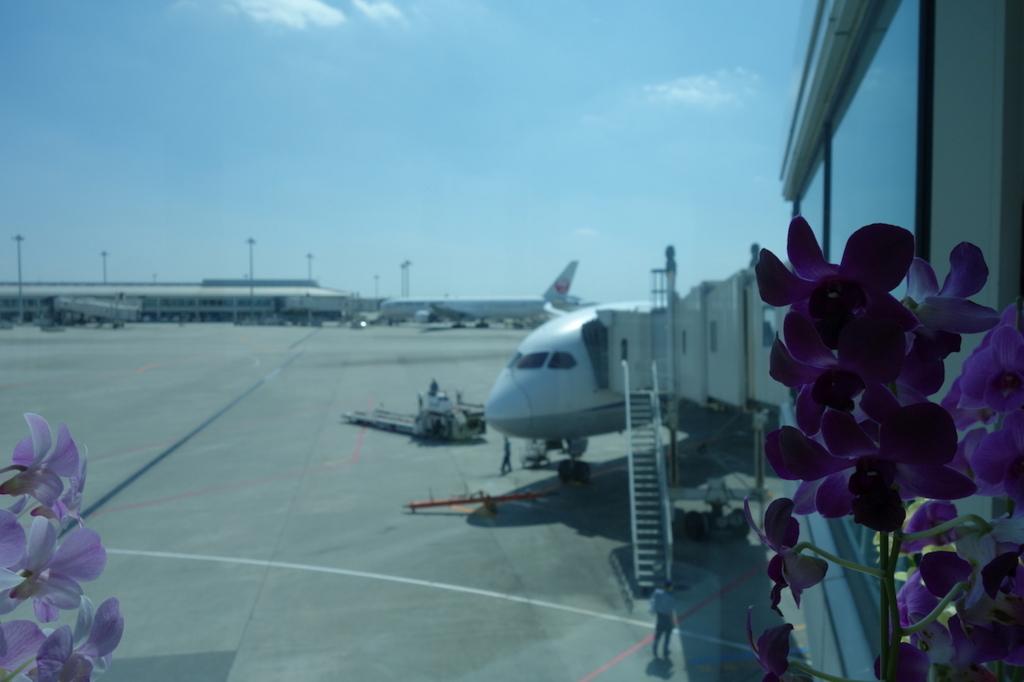 那覇空港のボーディングブリッジ(平成30年3月1日)