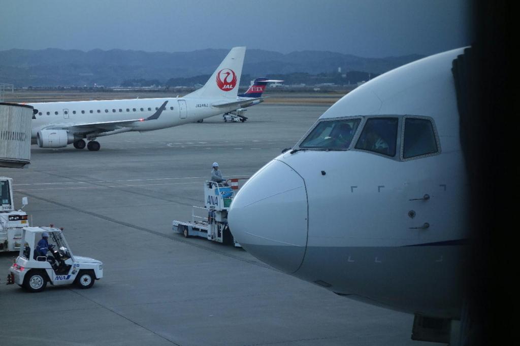 仙台国際空港のボーディングブリッジから見たANA1864便(平成30年3月1日)
