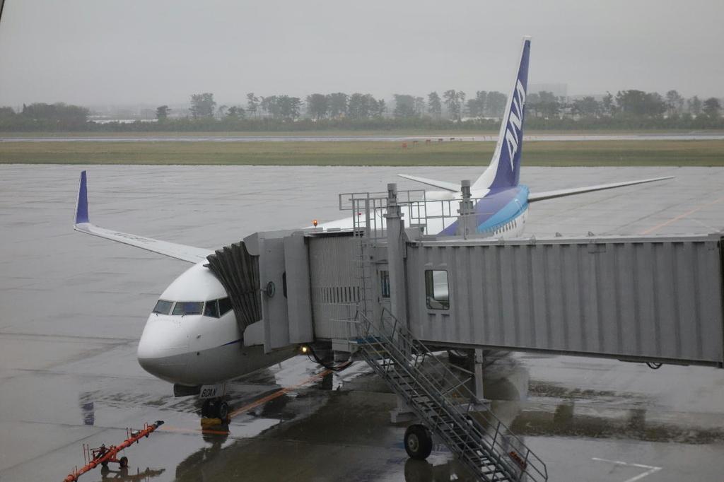 空港内から見たANA732便(平成30年4月25日)