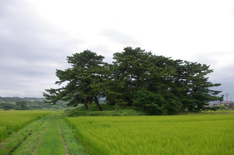 f:id:anachro-fukurou:20200107223509j:plain