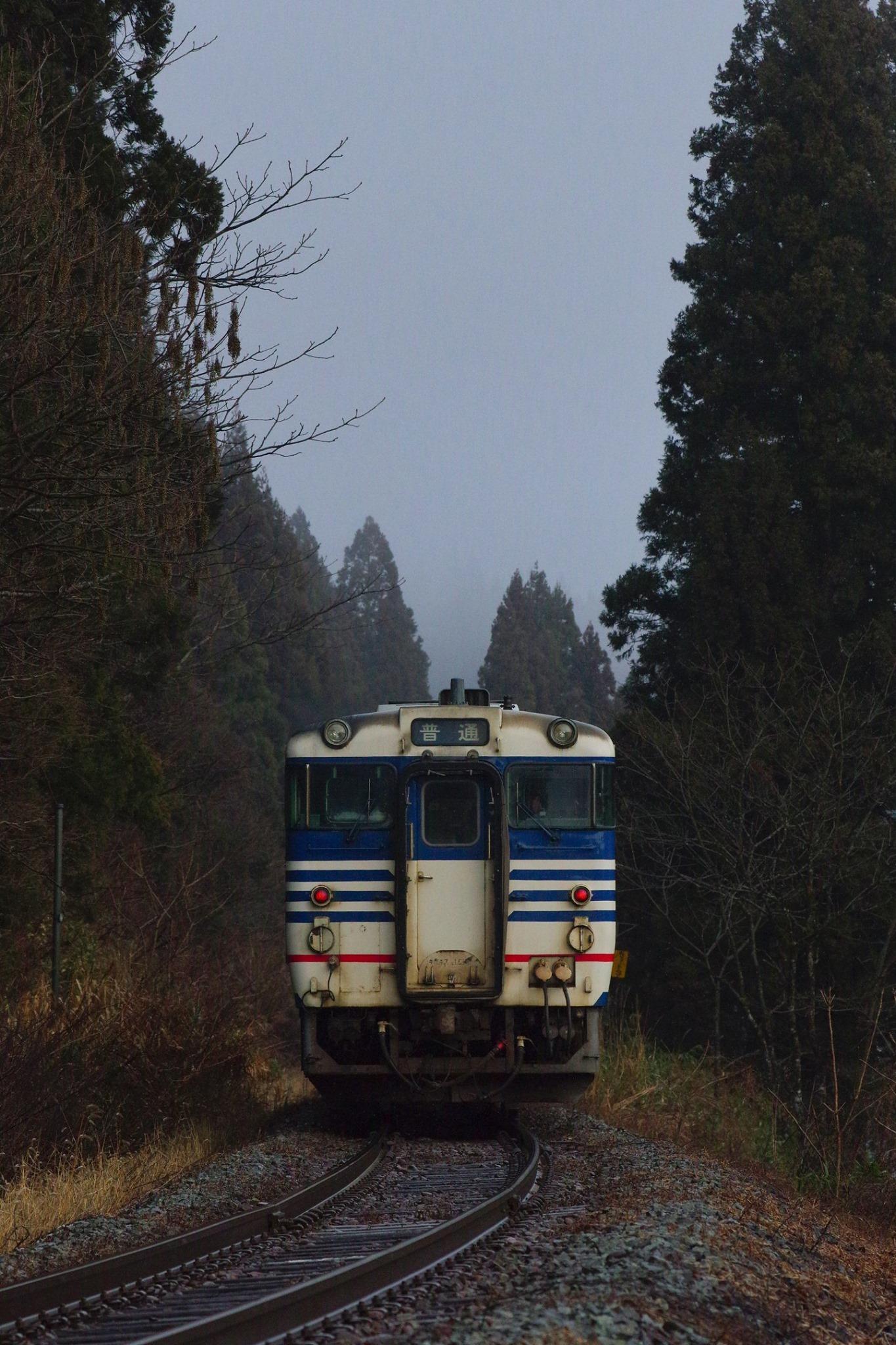 f:id:anachro-fukurou:20200219214356j:plain