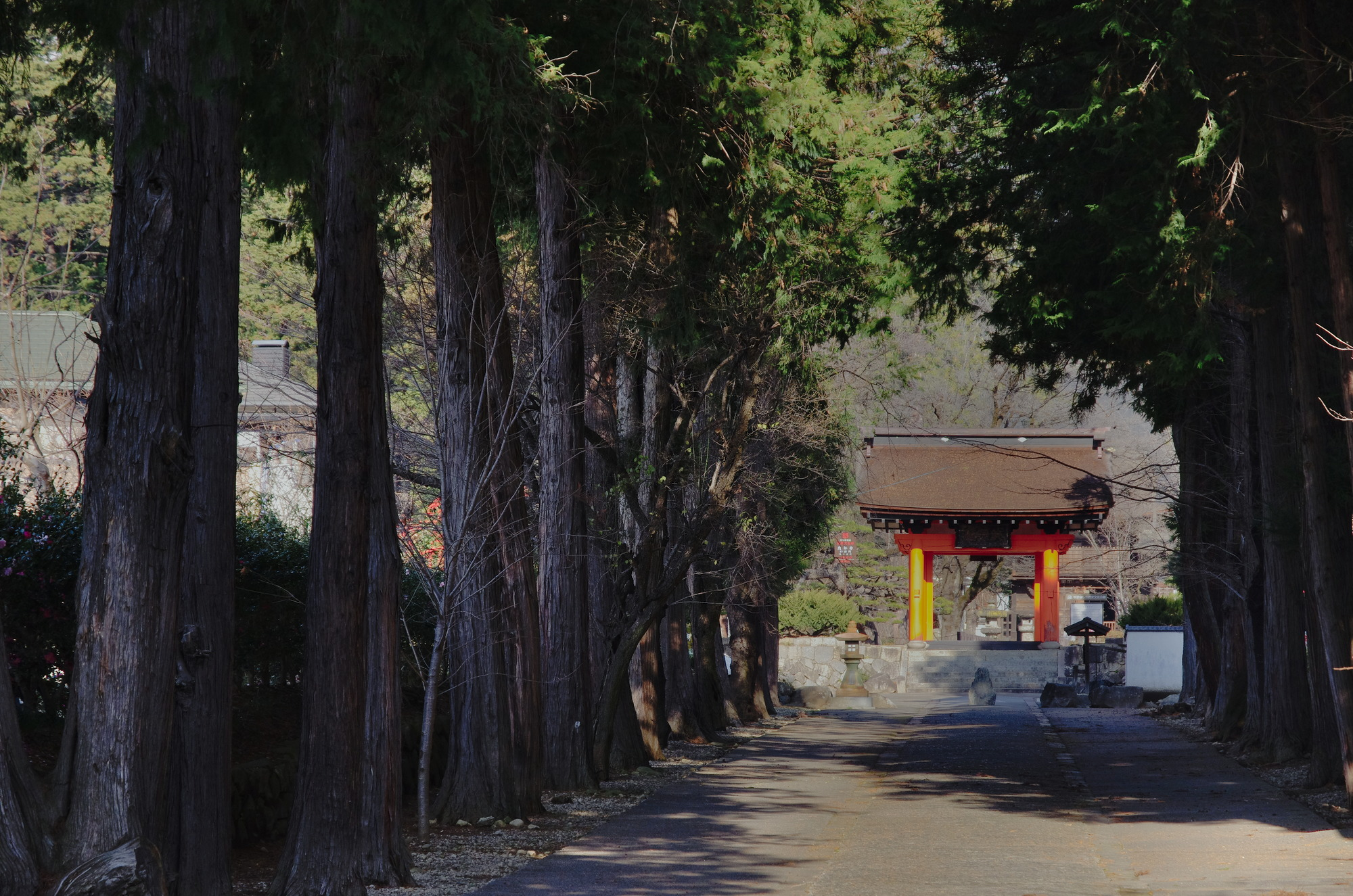 f:id:anachro-fukurou:20200426180049j:plain