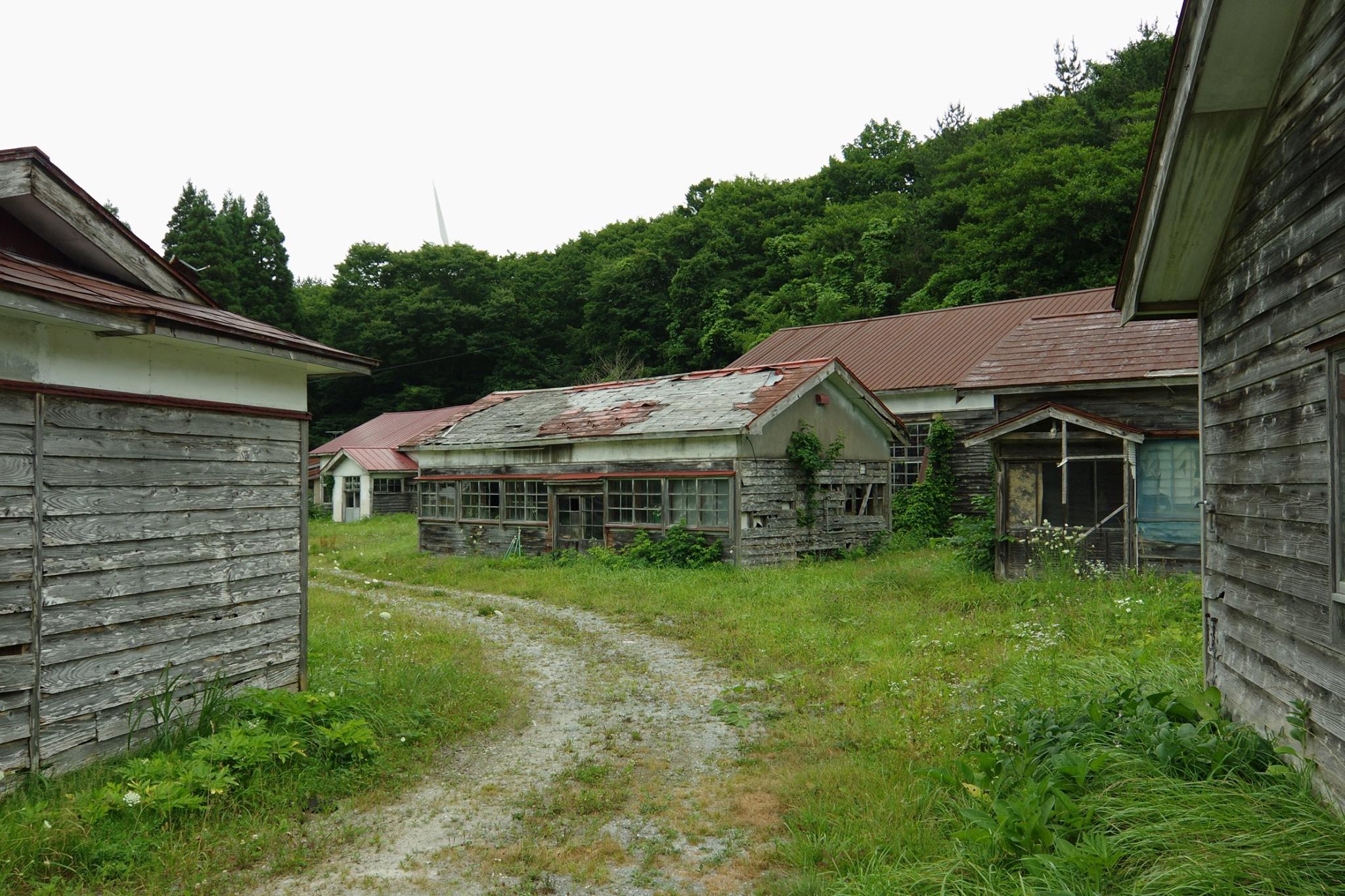 f:id:anachro-fukurou:20200614175156j:plain