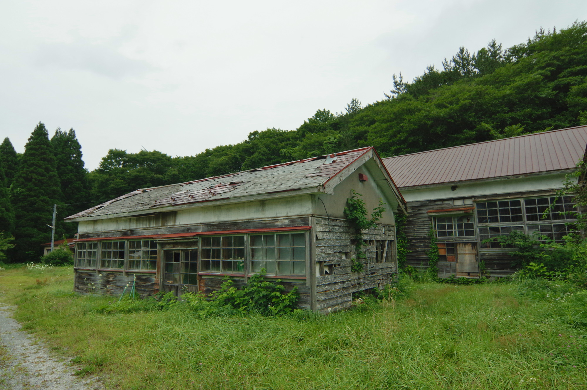 f:id:anachro-fukurou:20200614175246j:plain