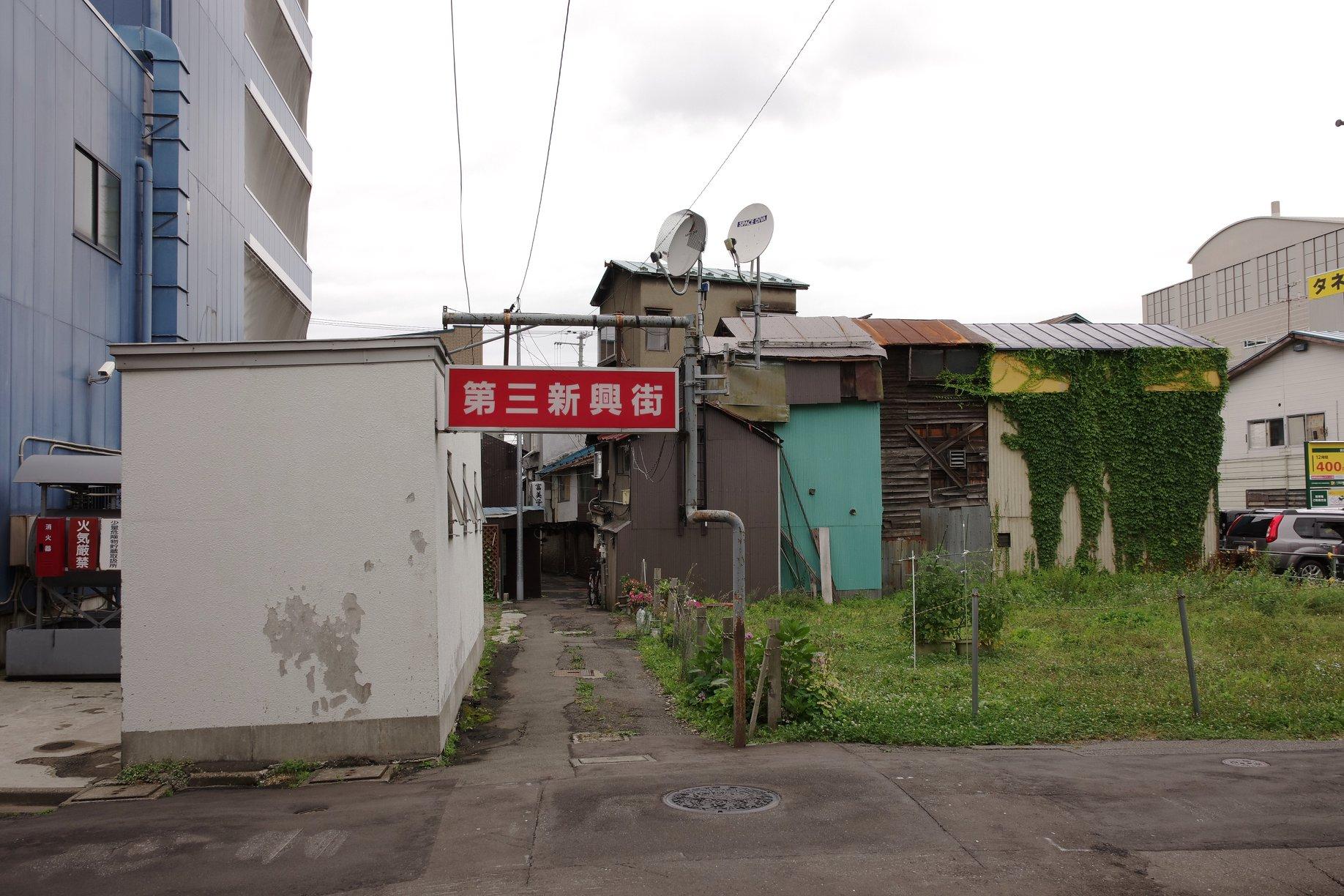f:id:anachro-fukurou:20200621172621j:plain