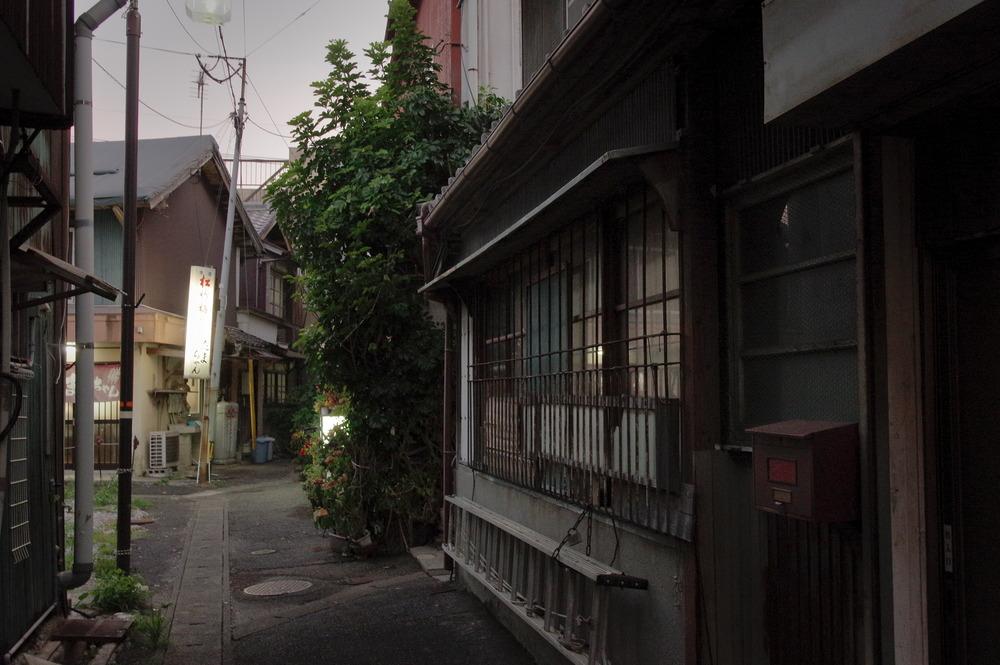 f:id:anachro-fukurou:20200829140429j:plain