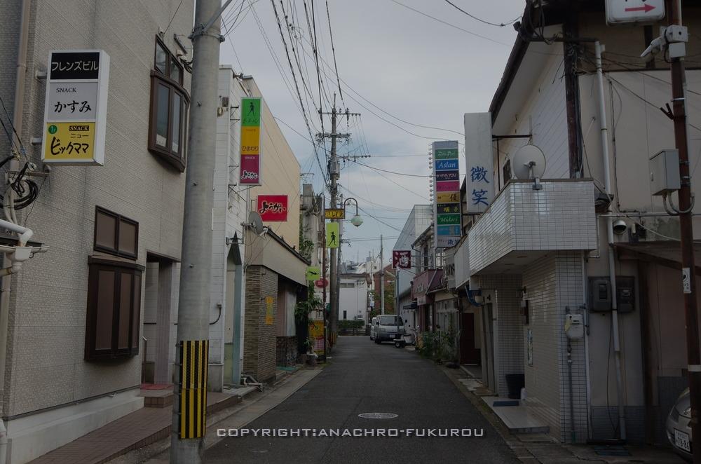 f:id:anachro-fukurou:20200924221038j:plain