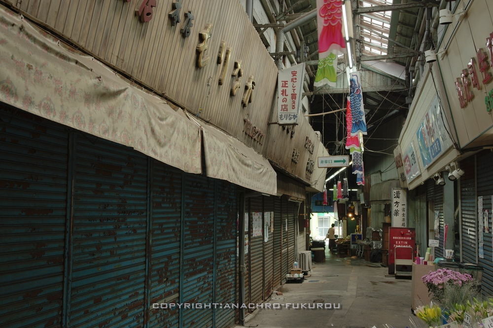 f:id:anachro-fukurou:20201120181407j:plain