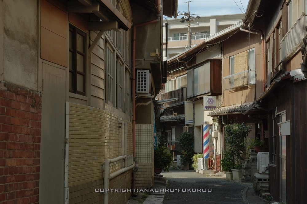 f:id:anachro-fukurou:20210111211543j:plain