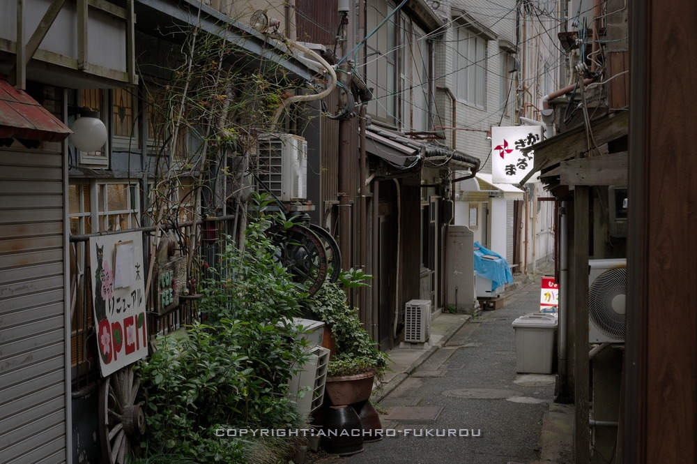 f:id:anachro-fukurou:20210116111850j:plain