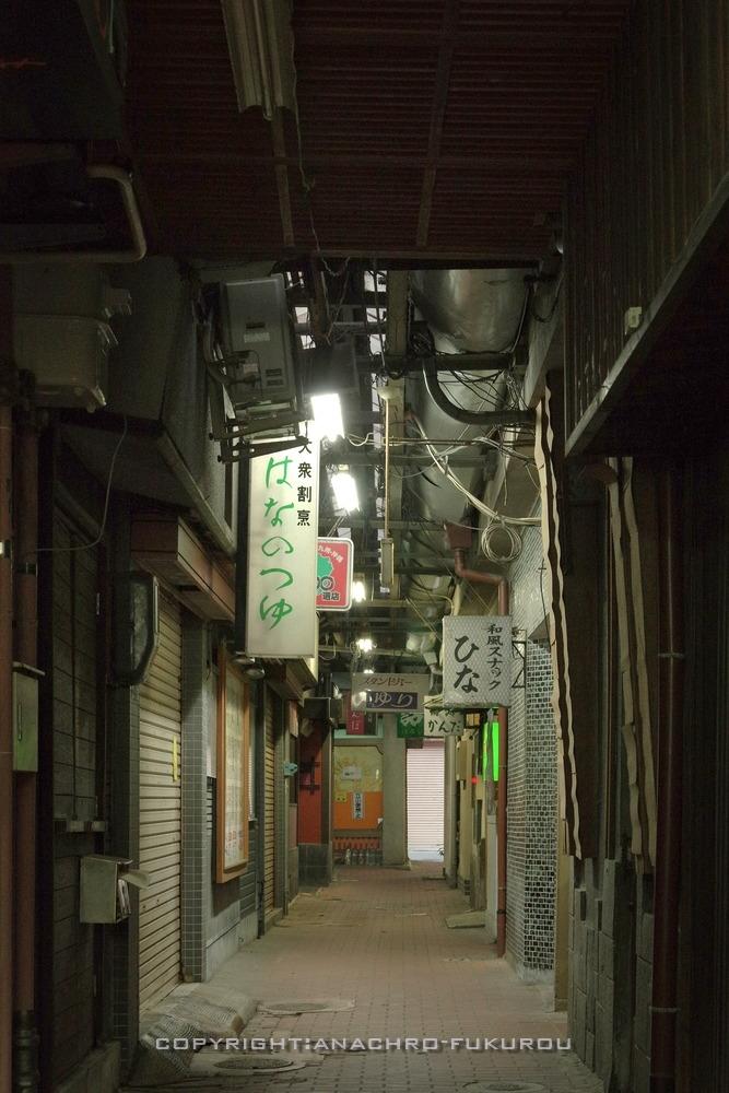 f:id:anachro-fukurou:20210116193007j:plain