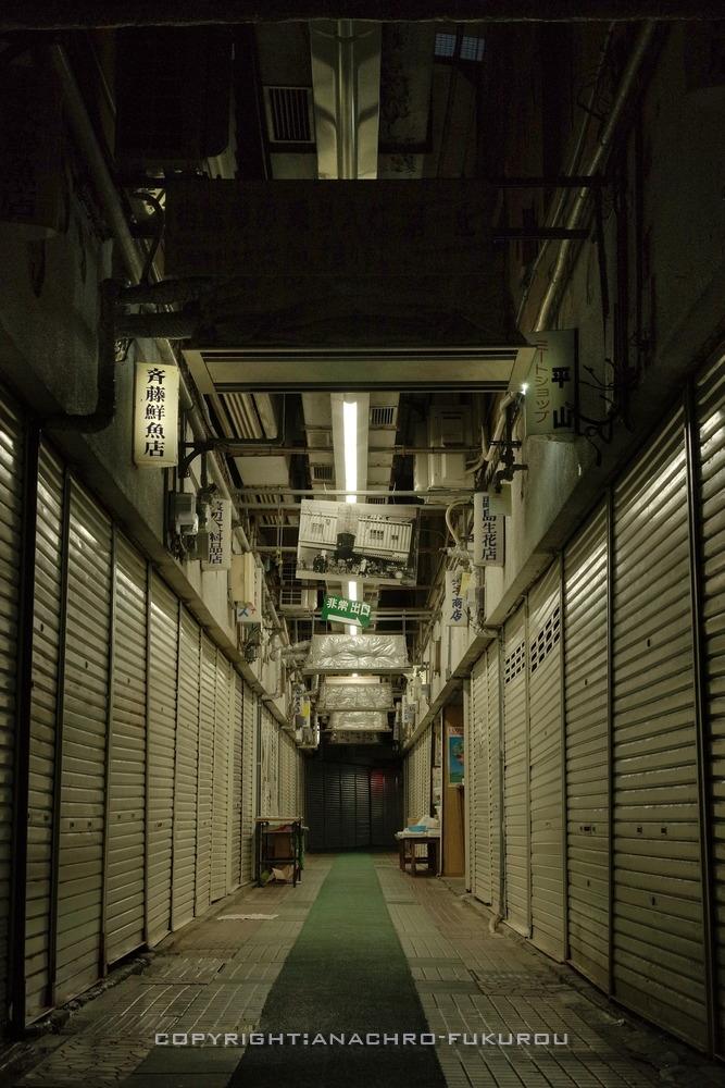 f:id:anachro-fukurou:20210119001626j:plain