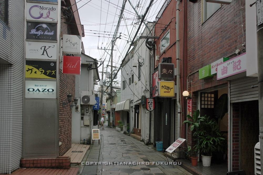 f:id:anachro-fukurou:20210206155933j:plain