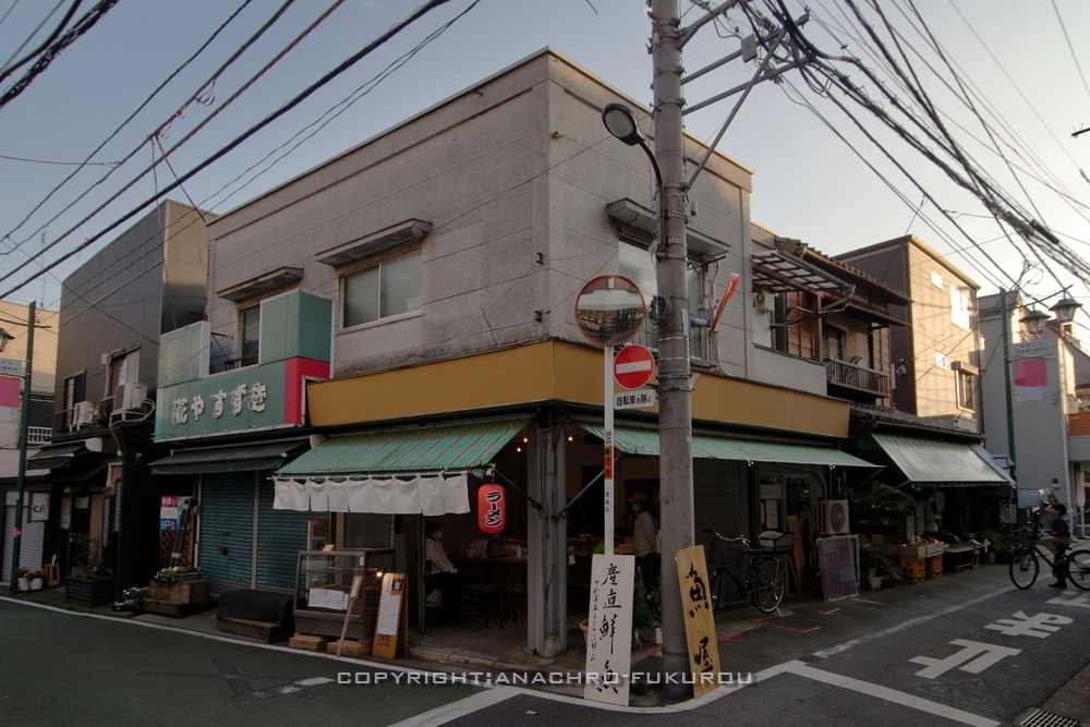 f:id:anachro-fukurou:20210214143122j:plain
