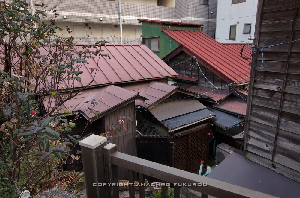 f:id:anachro-fukurou:20210214143324j:plain