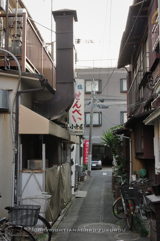 f:id:anachro-fukurou:20210214143425j:plain