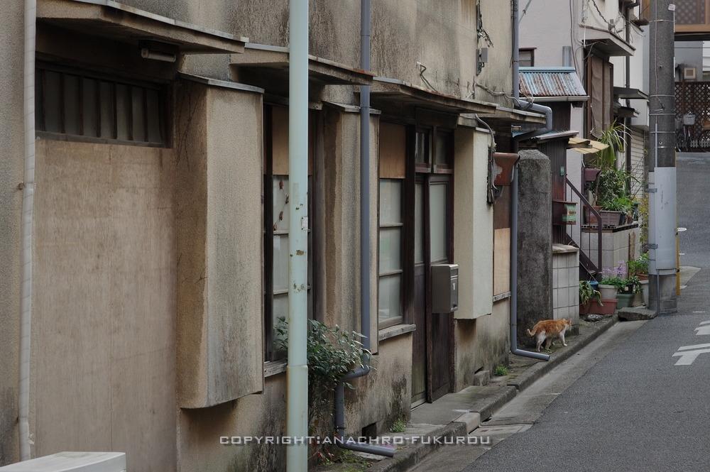 f:id:anachro-fukurou:20210214143454j:plain