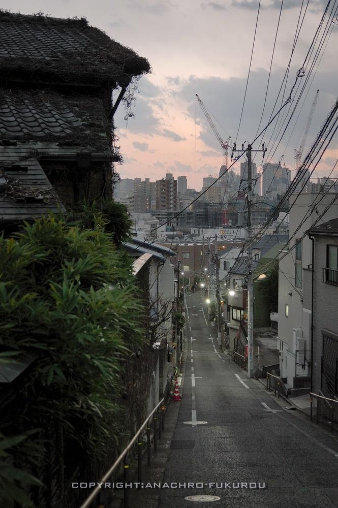 f:id:anachro-fukurou:20210214143539j:plain