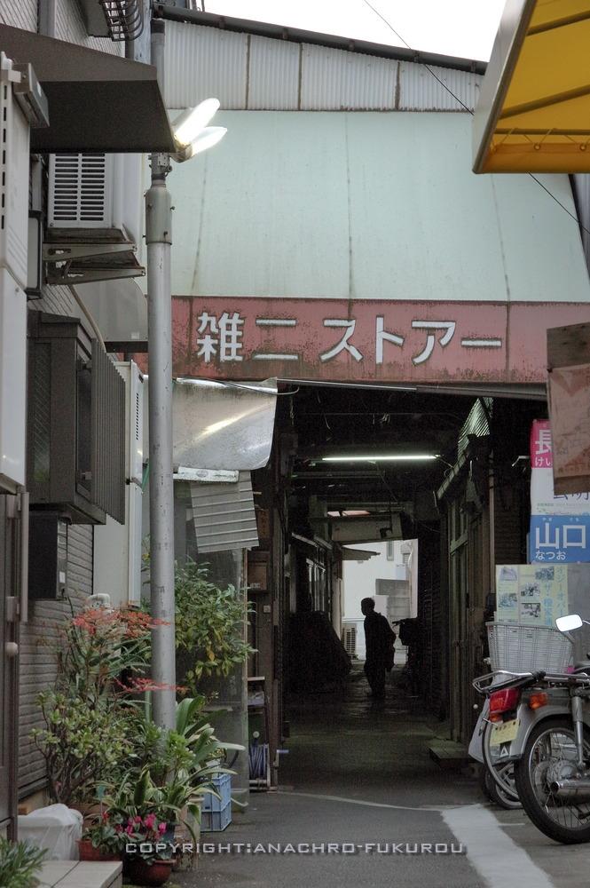 f:id:anachro-fukurou:20210215002749j:plain