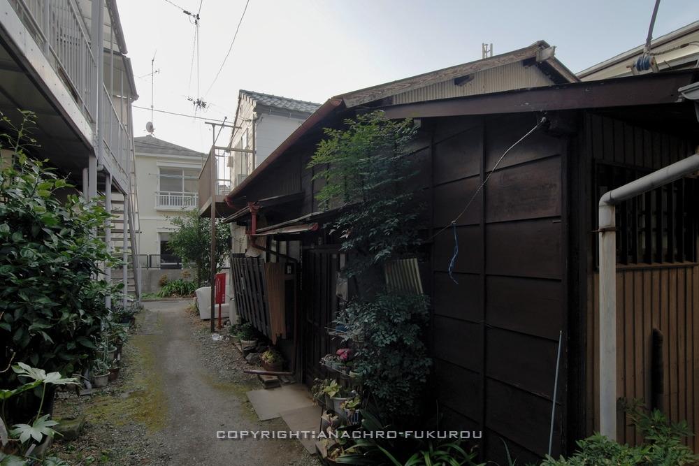 f:id:anachro-fukurou:20210222090345j:plain