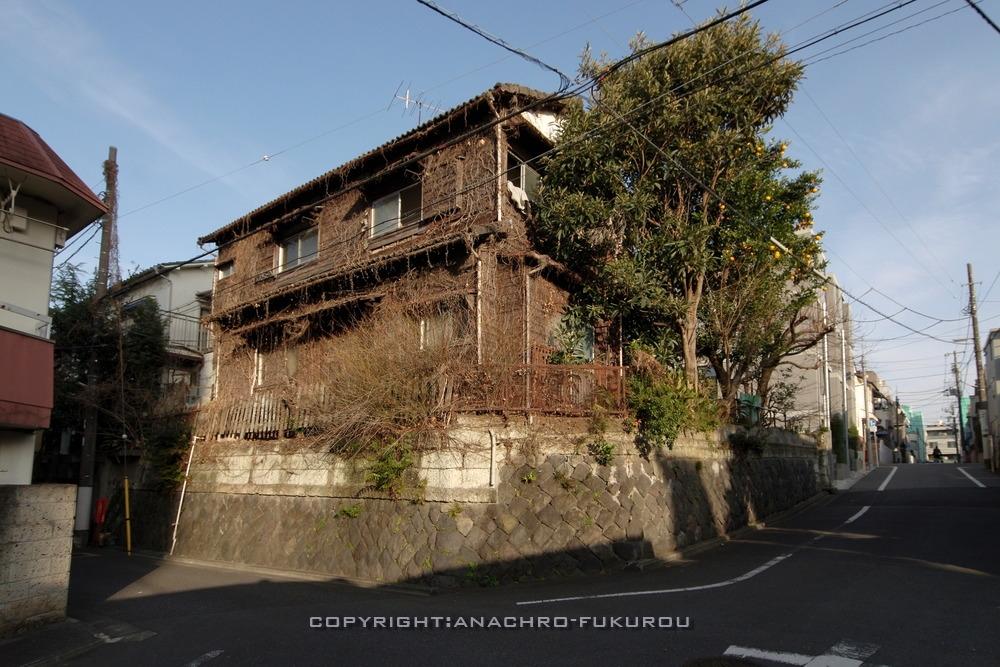 f:id:anachro-fukurou:20210222090413j:plain