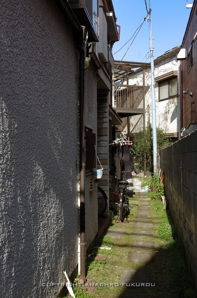 f:id:anachro-fukurou:20210224084932j:plain