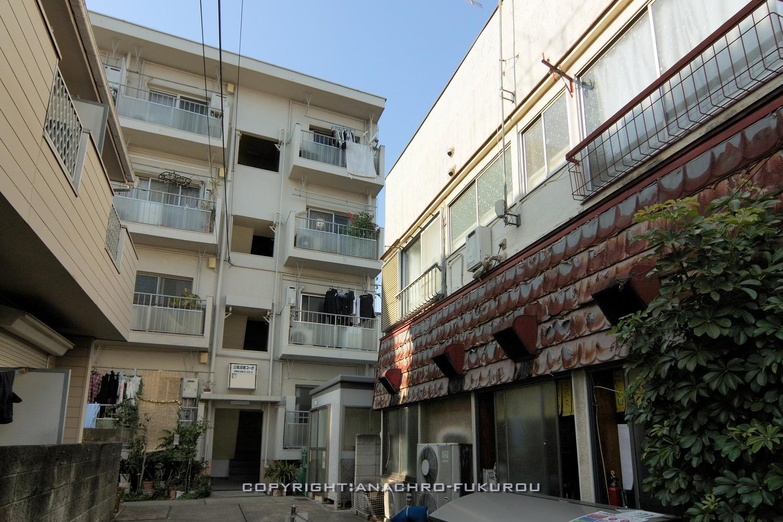 f:id:anachro-fukurou:20210224085124j:plain