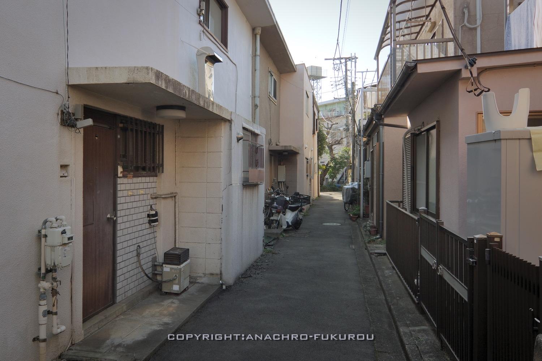 f:id:anachro-fukurou:20210224085203j:plain