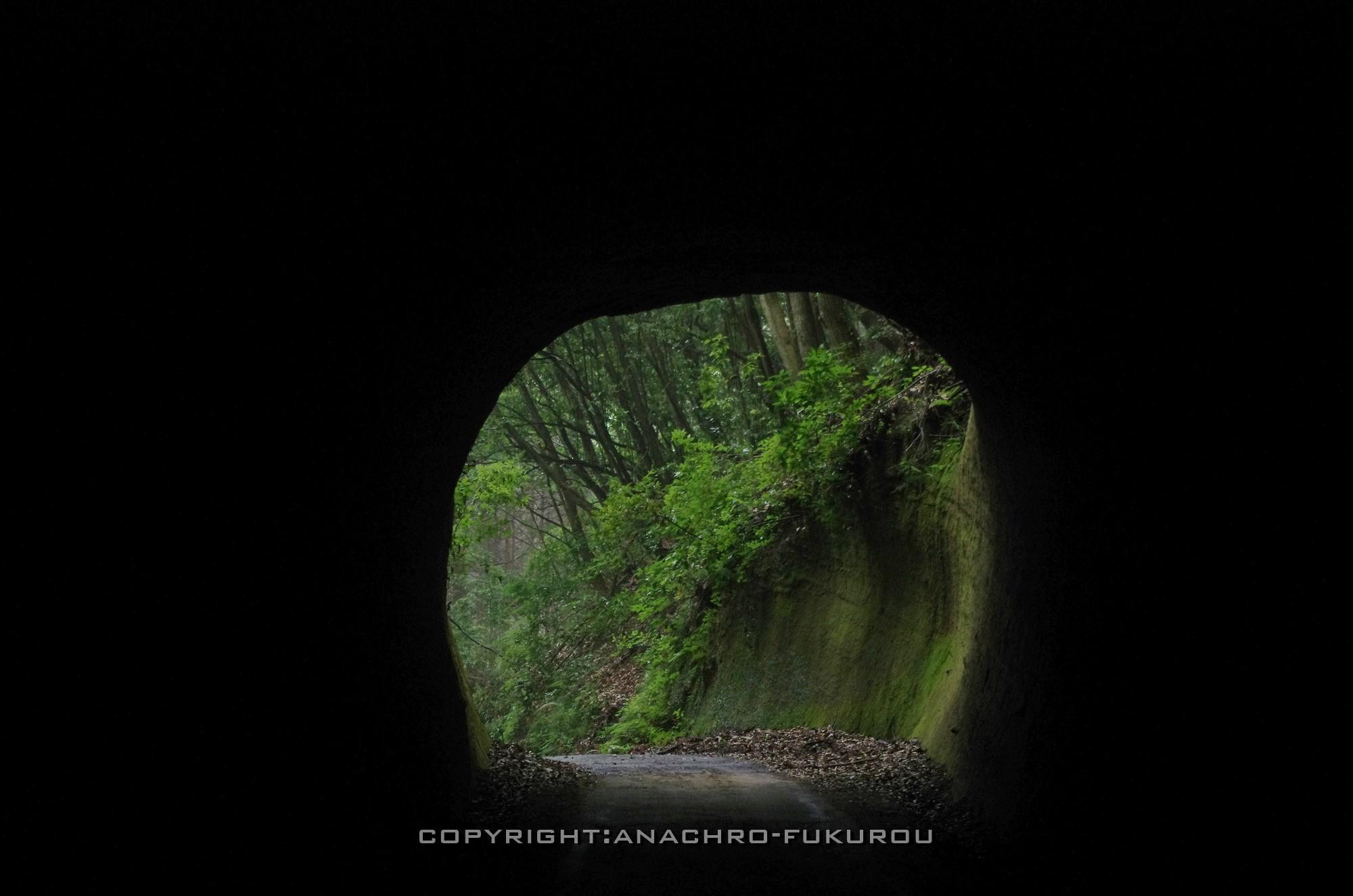 f:id:anachro-fukurou:20210226134617j:plain