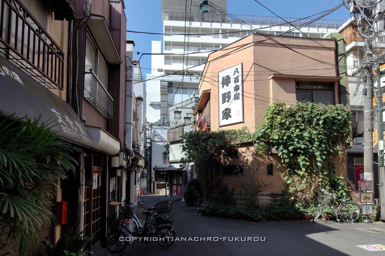 f:id:anachro-fukurou:20210228160505j:plain