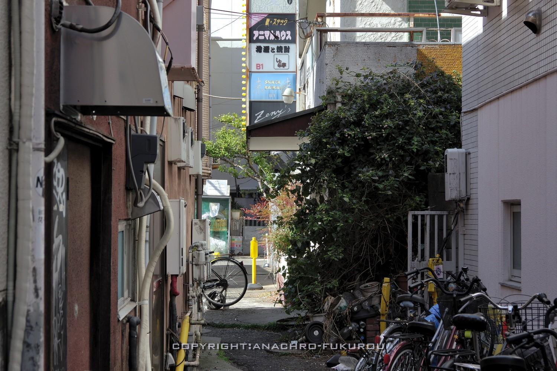 f:id:anachro-fukurou:20210228160930j:plain