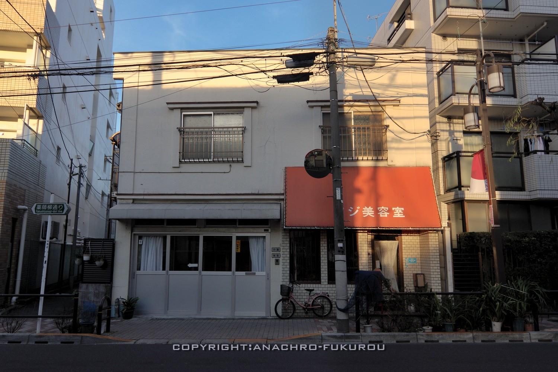 f:id:anachro-fukurou:20210303211621j:plain