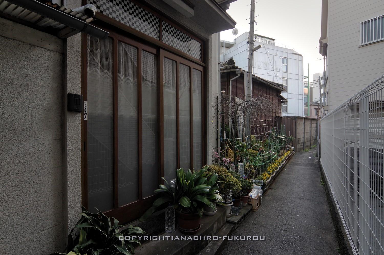 f:id:anachro-fukurou:20210303211640j:plain