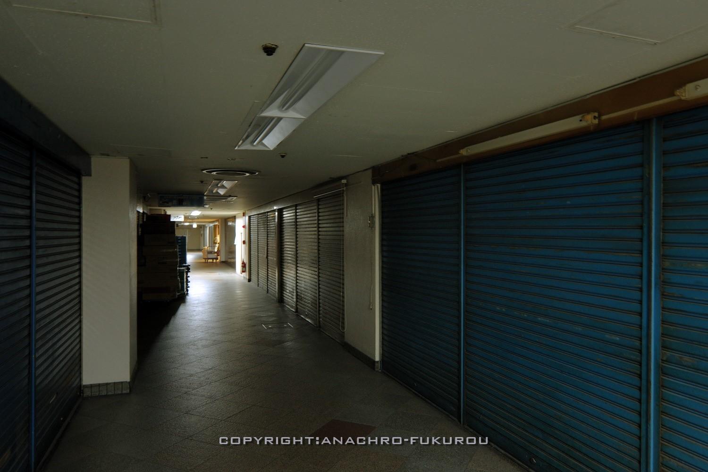 f:id:anachro-fukurou:20210307161311j:plain