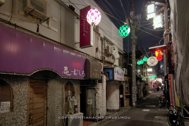 f:id:anachro-fukurou:20210307162254j:plain