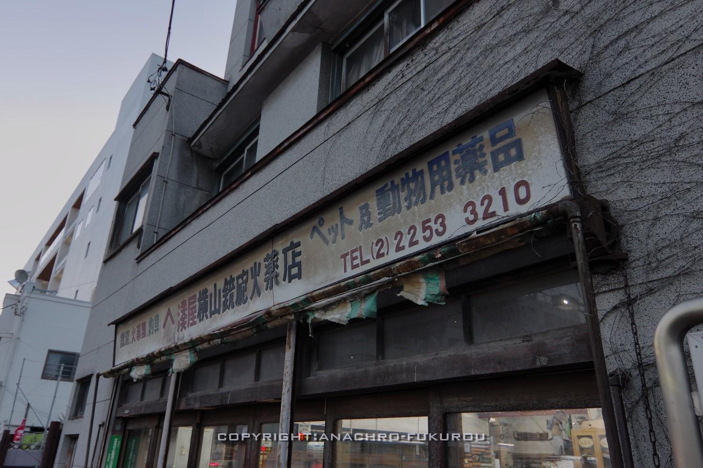 f:id:anachro-fukurou:20210508000617j:plain