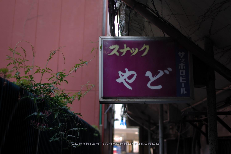 f:id:anachro-fukurou:20210518222118j:plain