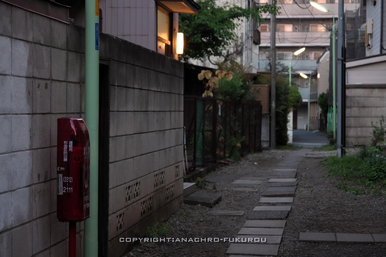 f:id:anachro-fukurou:20210518222215j:plain