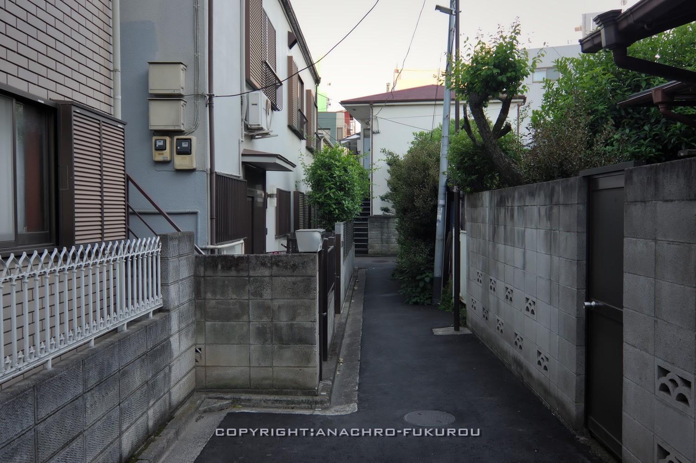 f:id:anachro-fukurou:20210519221122j:plain