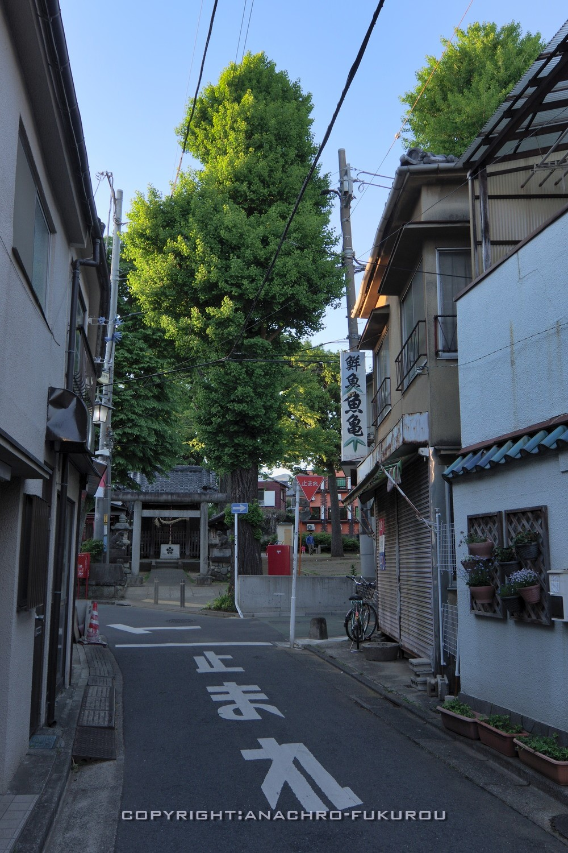 f:id:anachro-fukurou:20210519221254j:plain