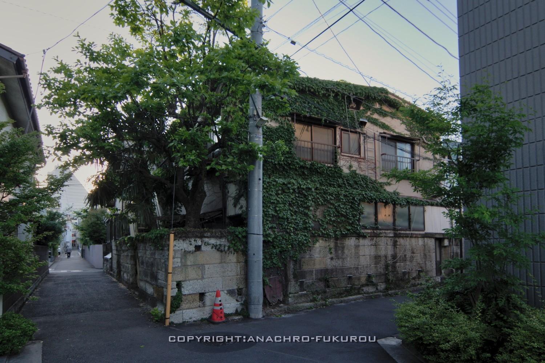 f:id:anachro-fukurou:20210519221326j:plain