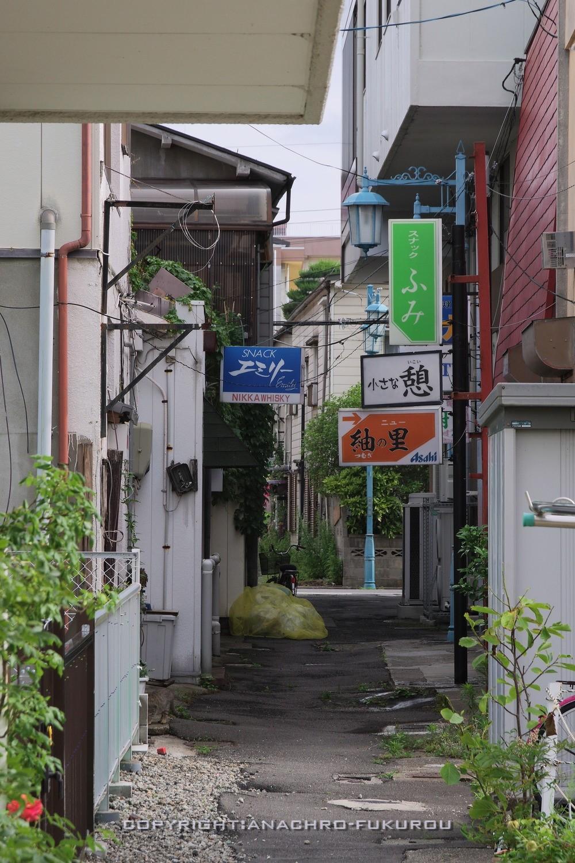 f:id:anachro-fukurou:20210704173054j:plain